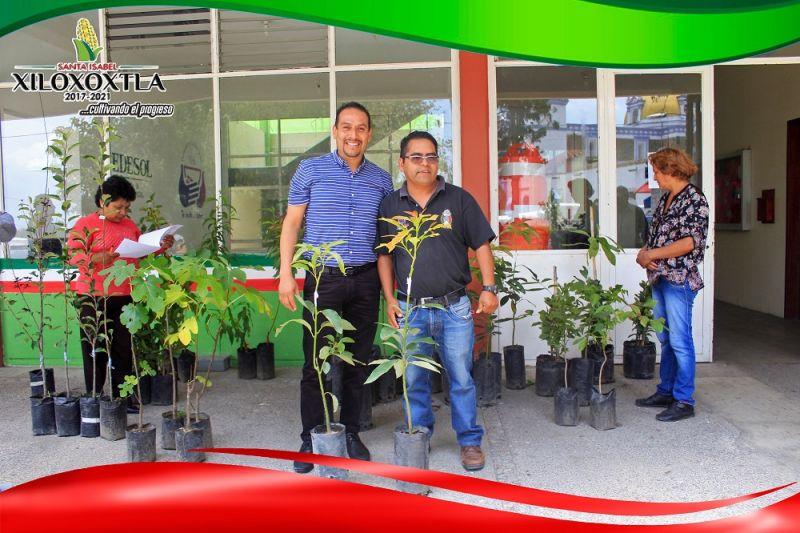 Entrega alcalde de Xiloxoxtla arboles frutales a ciudadanos